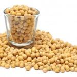 Como a soja regula os hormônios na menopausa?