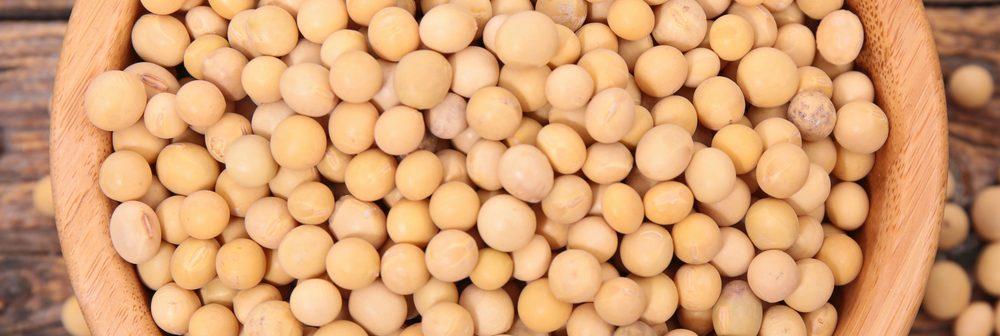 Alimentos à base de soja que toda mulher com mais de quarenta deve conhecer